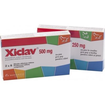 Ксиклав антибактериальный препарат